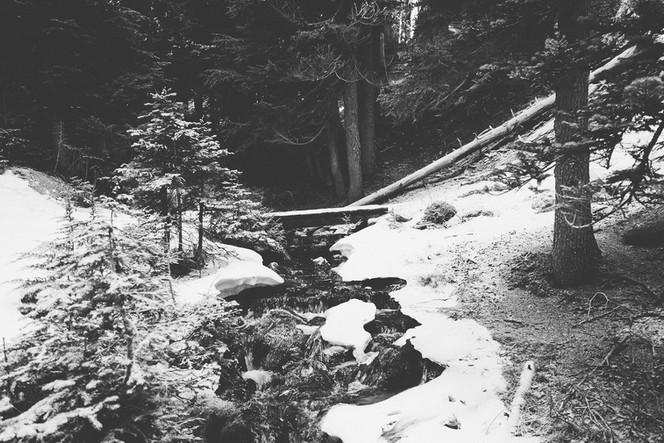 Und auch die eisige Kälte, die sich über einige Gebiete Taleras erstreckt, unterdrückt nicht die Hoffnung, welche in uns alle schlummert.