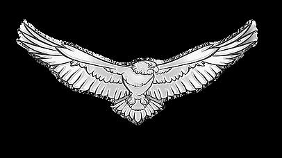 Eagle main eagle.webp