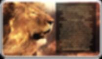 lion message.png