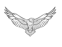 Eagle a.png