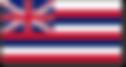 hawaii flag.png