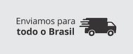 Enviamos Brasil