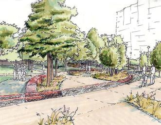 Campus Green Braid-01.jpg
