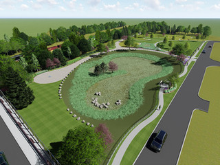 Cleveland Woodland Central Green Infrastructure