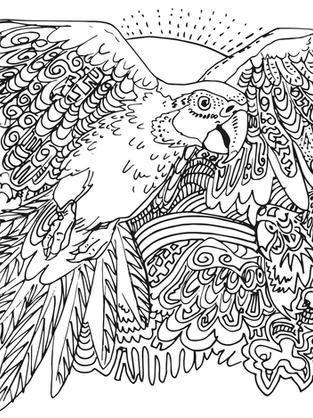 ara papagai vogel ausmalbild ausmalen gr