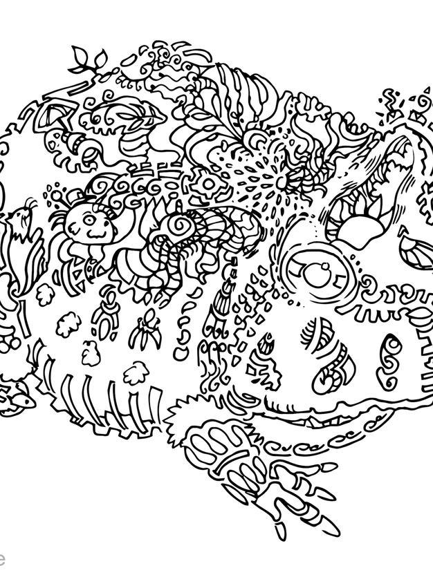 kröte frosch reptil ausmalbild ausmalen