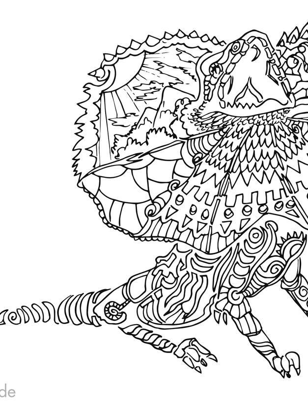kragenechse echse reptil drache zeichnun