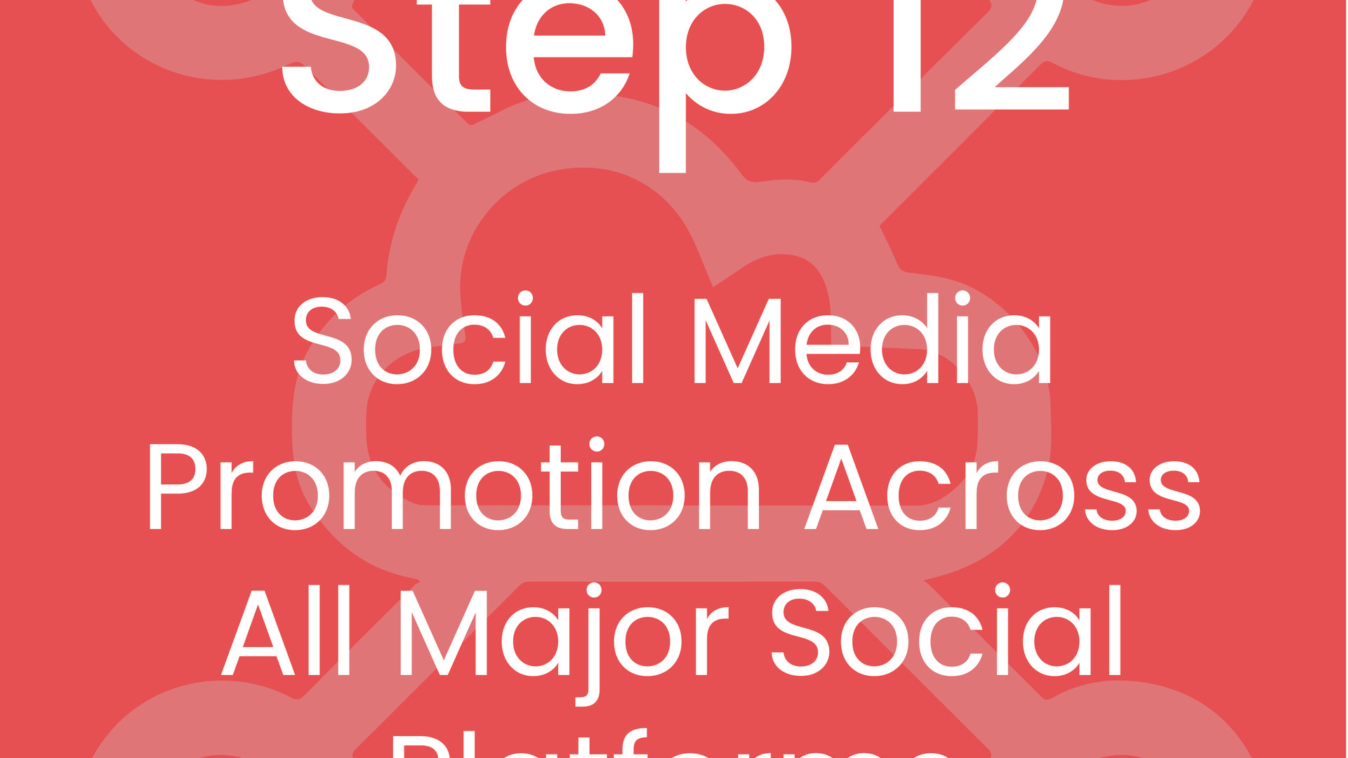 Step 12: Social Media Promotion Across All Major Social Platforms