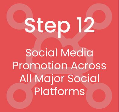 Step 12: Social Media Promotion Across All Major Social Platforms