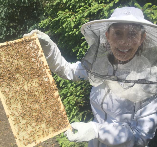 Bija beekeeping