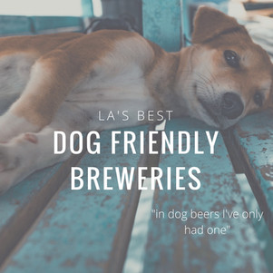 Dog Friendly Breweries in LA