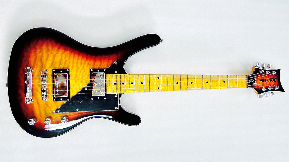 Tiger Flame Sunburst Reverse MI-5 Guitar