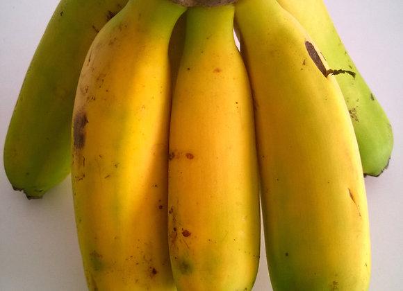 Banana da Madeira . 1 kg