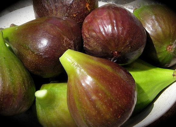 Figos M . 0,5 kg