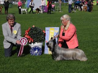 Helsinki Show  (Over 1 600 dogs) Judge Andrzej Kazmierski, Poland