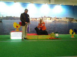Stockholm Int. Show BOB, BIS veteran evergreen