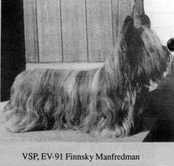 Finnsky Manfredman