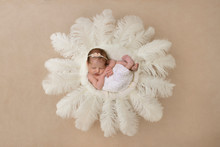My Favourite things about Newborn Photography.