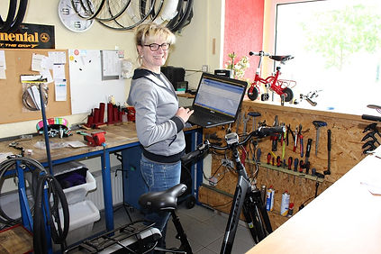 Wir analysieren Ihr E-Bike mittels Software.