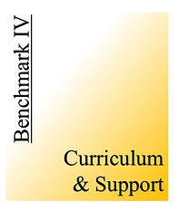 Benchmark IV - Curriculum & Support.png