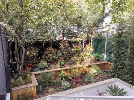 Aménagement d'un jardin en terrasses à Boulogne Billancourt (92)