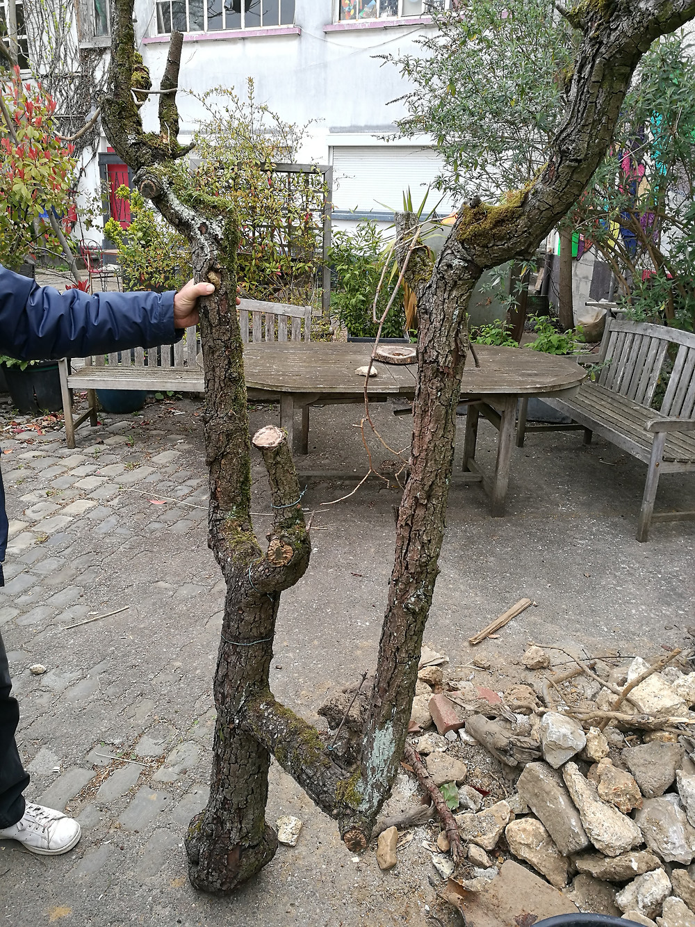 Jardinier Issy les Moulineaux