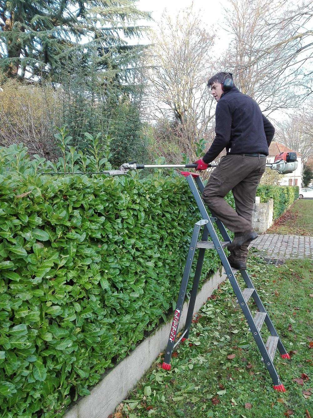 Jardinier Vanves