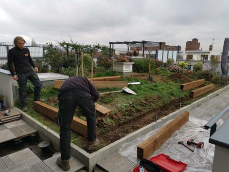 Aménagement d'un jardin sur une terrasse à Saint-Cloud (92)