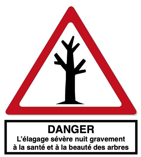 DANGER : l'élagage sévère nuit gravement à la santé et à la beauté des arbres.