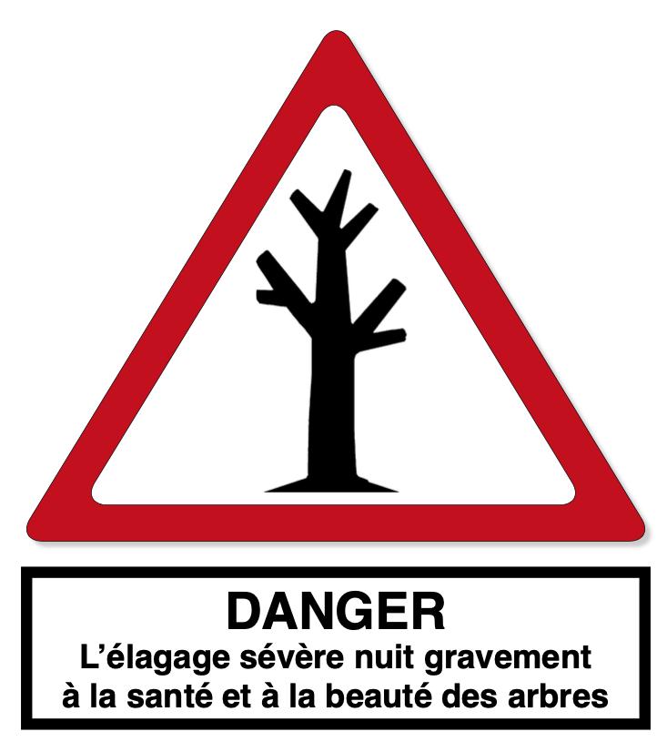 Elagage Elagueur Meudon Clamart Sèvres Boulogne