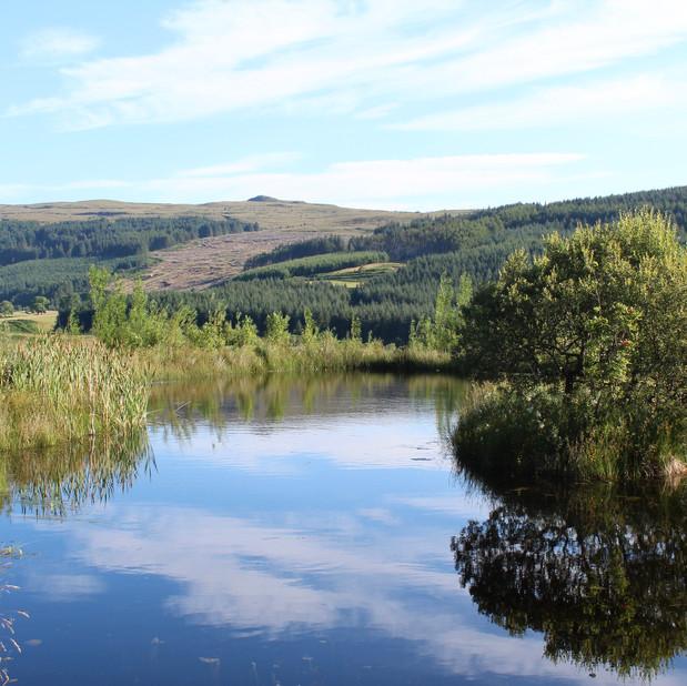 Pond at Crannich