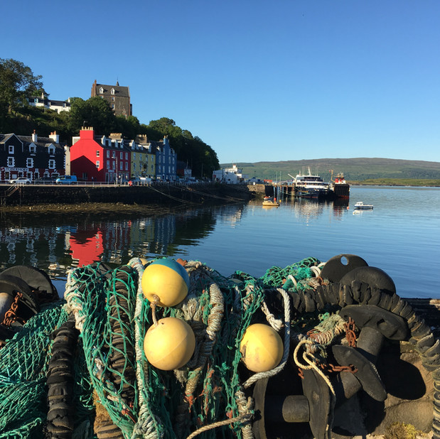 Buoys at Tobermory