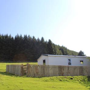 Forest behind Speinne Mòr