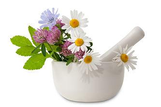 herbs mortar and pestal.jpg
