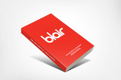 Britpop Blur book, Joe Windsor