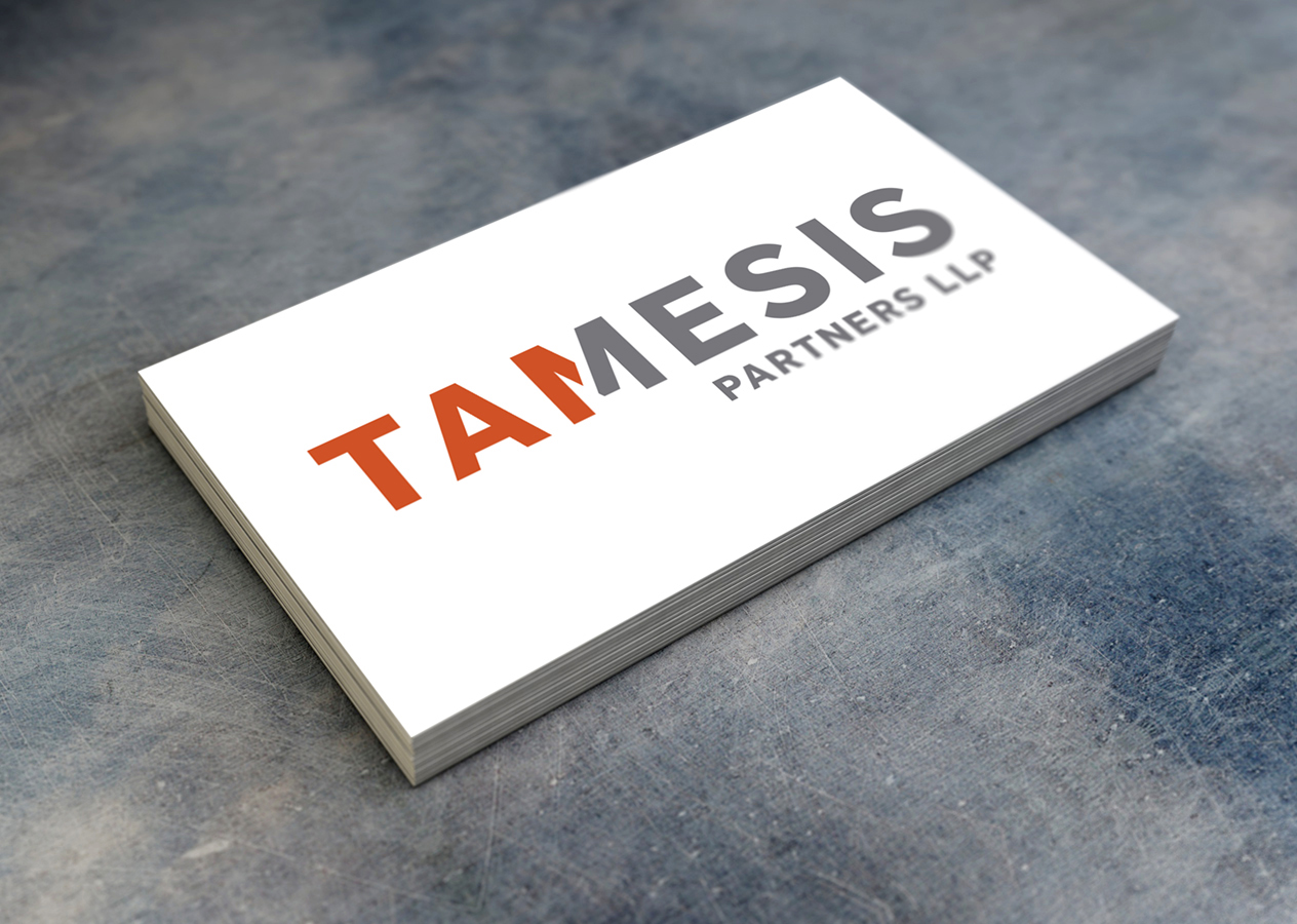 Tamesis Partners LLP