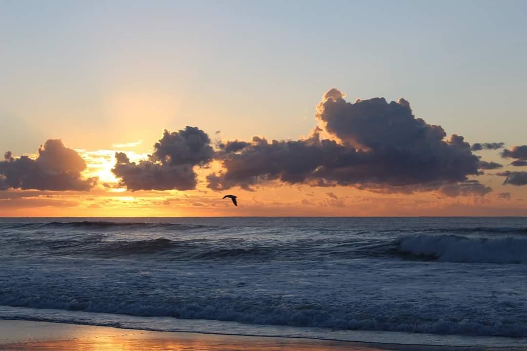 Tuncurry Beach