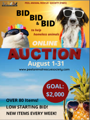 AUGUST AUCTION MONTH!!.png