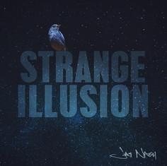 Strange Illusion - Jay Nash