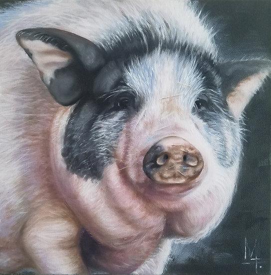 """Sexy Pig"" - PRINT"