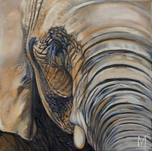 artgonewild.2019.elephant.jpg