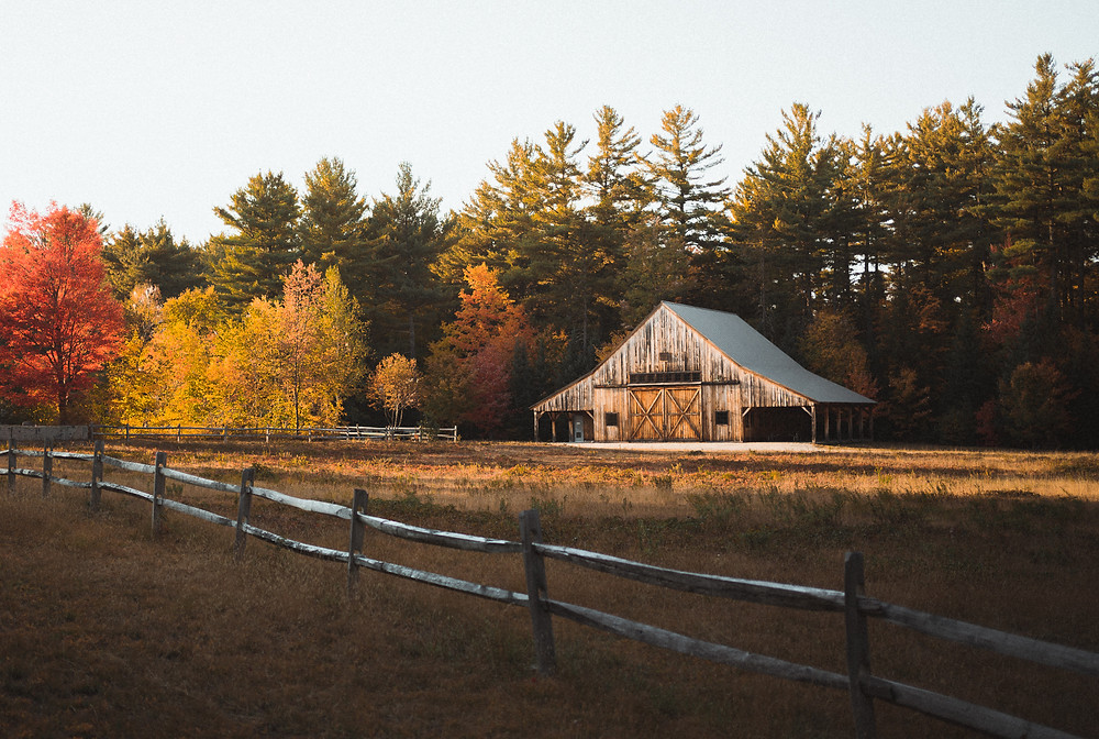 Classic barn among the autumn leaves