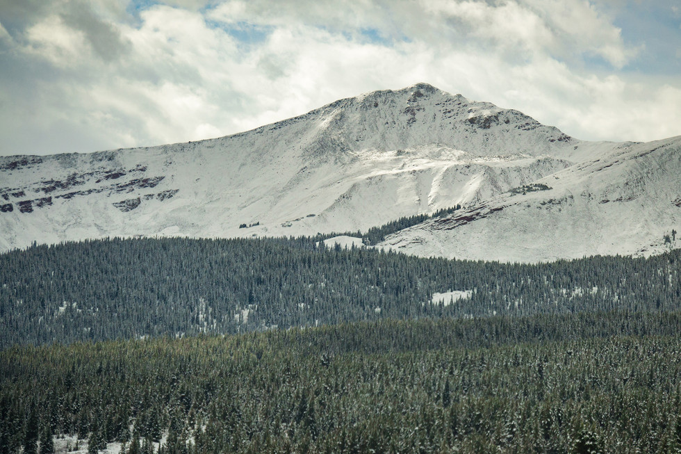 Vail Pass view