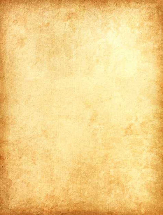 page manuscrit vierge.jpg
