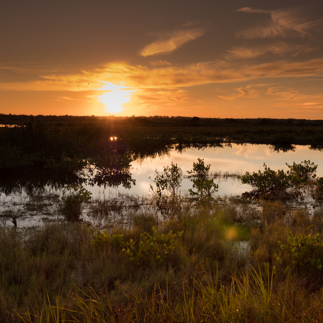 Sonnenuntergang, Merritt Island National Wildlife Refuge, Florida