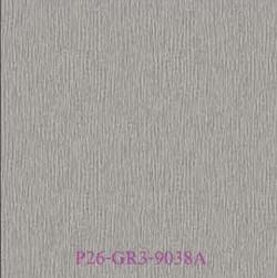 P26-GR3-9038A