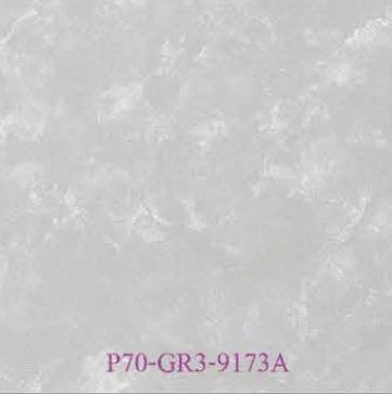 P70-GR3-9173A