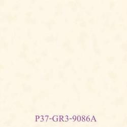 P37-GR3-9086A