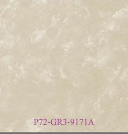 P72-GR3-9171A