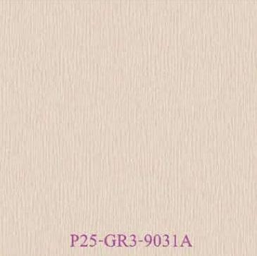 P25-GR3-9031A
